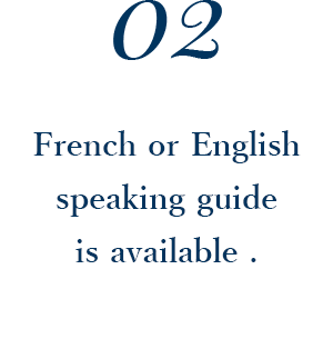 French or English speaking guide is available .
